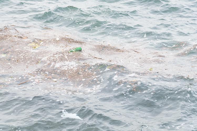 守 さ ろう 豊か 海 の を SDGsの目標14「海の豊かさを守ろう」で解決するべき問題と現状とは